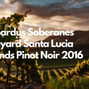 Bernardus Soberanes Vineyard Santa Lucia Highlands Pinot Noir 2016