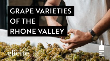 The Different Grape Varieties And Styles Of The Rhone Valley Wine Region