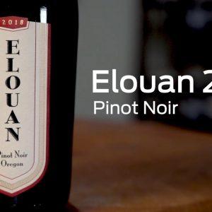 Elouan 2018 Pinot Noir Oregon  175028918
