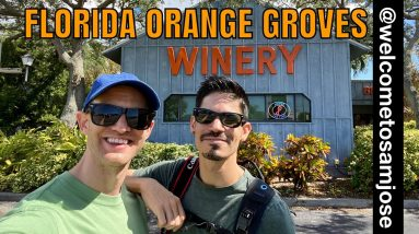 Florida Orange Groves Winery in St. Petersburg, Florida - Travel Highlight with Welcome to Sam José!