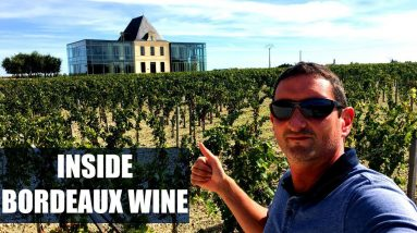 How Wine is Made? Inside a Top Château in Bordeaux