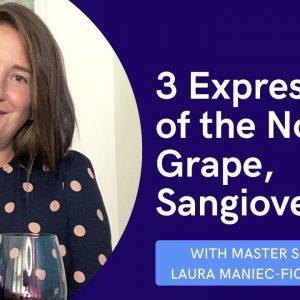 Sangiovese Red Wine Tasting || Clip