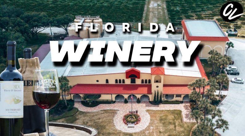 Where to get a FREE wine tour and tasting in Florida
