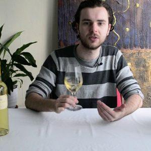 Wine Expert taste Italian Wines: Anselmi 'Capitel Croce' 2013