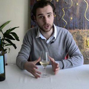 Wine Expert taste Italian Wines: La Staffa Verdicchio