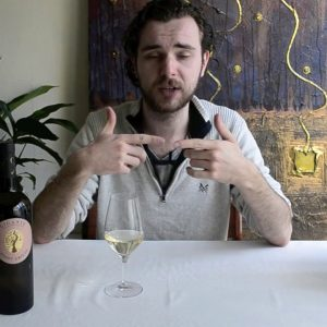 Wine Expert tastes Italian Wine: Gigante Pinot Grigio 2016