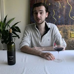 Wine Expert tastes Italian Wines: Erste + Neue Lagrein 2015