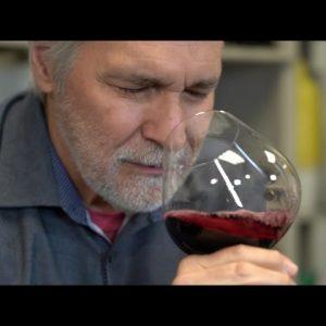 Panther Creek 2018 Pinot Noir, De Ponte Vineyard, Dundee Hills, Willamette Valley